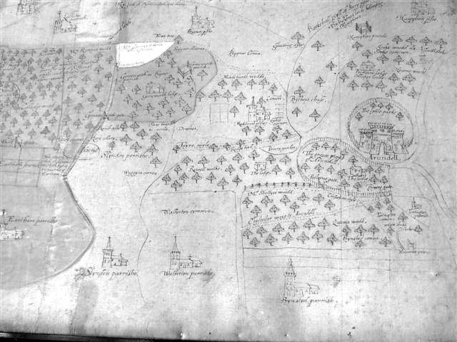Ancient maps show Tortington Common and Binsted Woods were part of Arundel's deer park