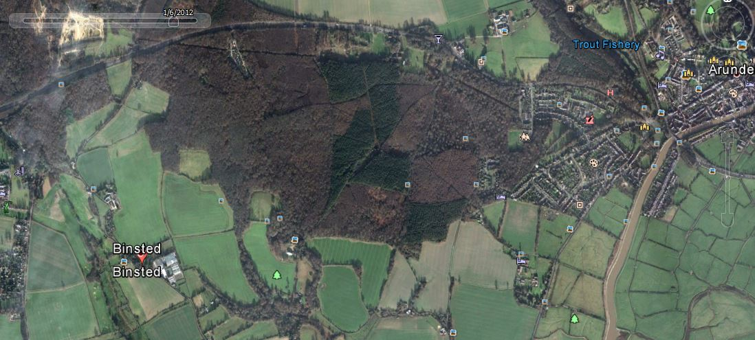 Tortington Common ancient woodland is seen in this aerial photo to have many deciduous trees around and among its temporary coniferous plantation